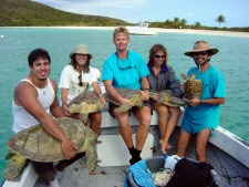 1 (Cm w researchers at Culebrita PR) - (c) Chelonia Inc
