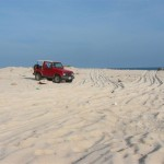 2wc.org image - LEGISLATION-Carib (beach driving Aruba) - (c) Turtugaruba