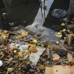 2wc.org image - LEGISLATION-Carib (coastal debris Bocas del Toro) - (c) R Merel