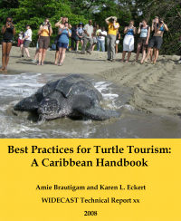 Best Practices for Turtle Tourism