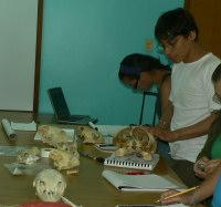 TERMINOLOGY XV Curso studies - (c) CICTMAR