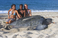 TWATCH wc.org  image - TURTLE WATCHING (Dc dawn at Paria VZ) - (c) A Humanes