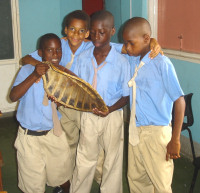 VISION classroom (La Plaine Primary) close - (c) Seth Stapleton