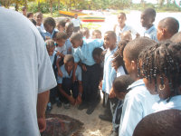 Anguilla8 - students view sea turtle