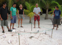 2 - Belize - Nest monitoring training - (c) A Tilley