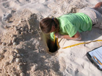 Cayman6 Measuring egg chamber during excavation - (c) DoE