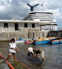 DM4 Turtle Release Dominica - (c) K Eckert - WIDECAST