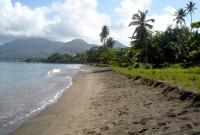DM9 west coast beach1 - (c) Seth Stapleton