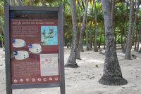 Guadeloupe12 - Nesting beach sign
