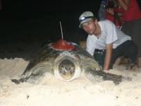 Guadeloupe3- Satellite Tracking Program (C