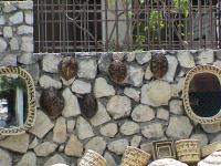 Haiti2 - shells for Sale (J Weiner)