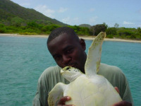 support-cm-in-hand-t-lettsome_turtle-fisher-bvi-2003-c-tcot